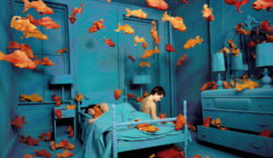 Italian art patrons. The Sandy Skoglund exhibit in Turin