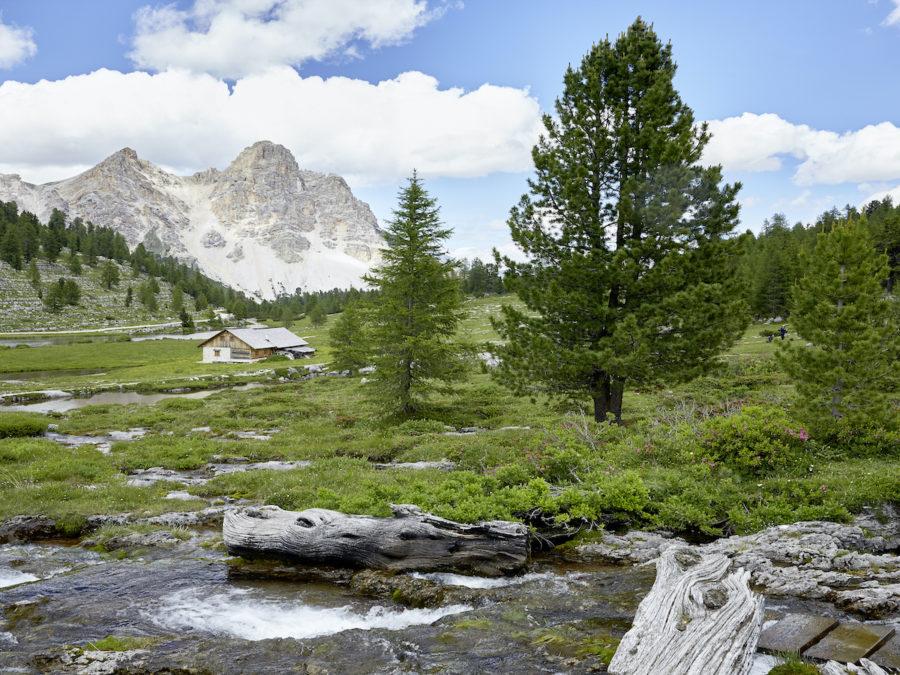 """Dal Molise alle Dolomiti, ridurre lo stress con un """"bagno nella natura"""""""