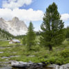 """From the Molise region to the Dolomites, easing stress by """"bathing in nature"""""""