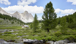 From the Molise region to the Dolomites, easing stress by…