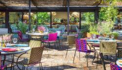 Le Serre a Roma, cucina mediterranea immersa nel verde