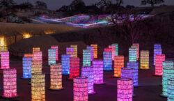 Campi che si illuminano e torri di bottiglie iridescenti. La…