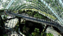 Abitare la terra, la strada tra bellezza e ambiente sostenibile