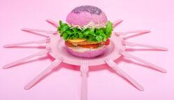 Burger Day, da quello gourmet a quello multicolor: tutti i…