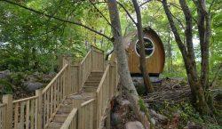 Dalle botti abitabili alla casa sull'albero, ecco i campeggi più…